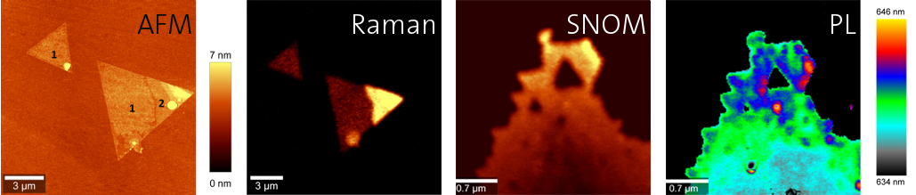 WITec Correlative Raman AFM SNOM Photoluminescence WS2